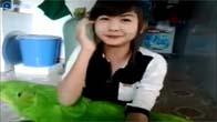 """Girl xinh cute cover """"Ngây Ngô"""" Hoàng Yến Chibi"""