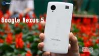 Google Nexus 5 chính hãng tại Việt Nam