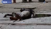 Xác người bệnh Ebola bị vứt la liệt ngoài đường