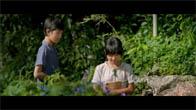 """Trailer phim """"Tôi Thấy Hoa Vàng Trên Cỏ Xanh"""""""