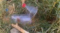 Hướng dẫn làm bẫy chuột đơn giản bằng chai nhựa