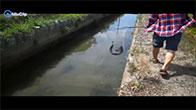 Người Việt Nam kéo nhau qua Nhật Bản bắt cá ở mương nước thải
