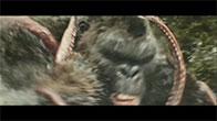 Kong - Skull Island (2017) - King Kong vs Bạch Tuộc Khổng Lồ