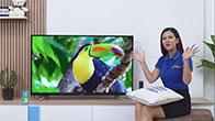 Android Tivi Panasonic 4K 49FX550V 49 inch điều khiển bằng giọng nói